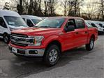 2019 F-150 SuperCrew Cab 4x4,  Pickup #45443 - photo 3