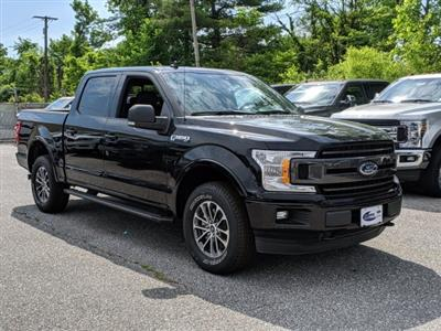 2019 F-150 SuperCrew Cab 4x4,  Pickup #45745 - photo 4
