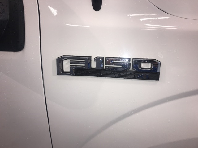 2019 F-150 Regular Cab 4x2,  Pickup #YD32319 - photo 6