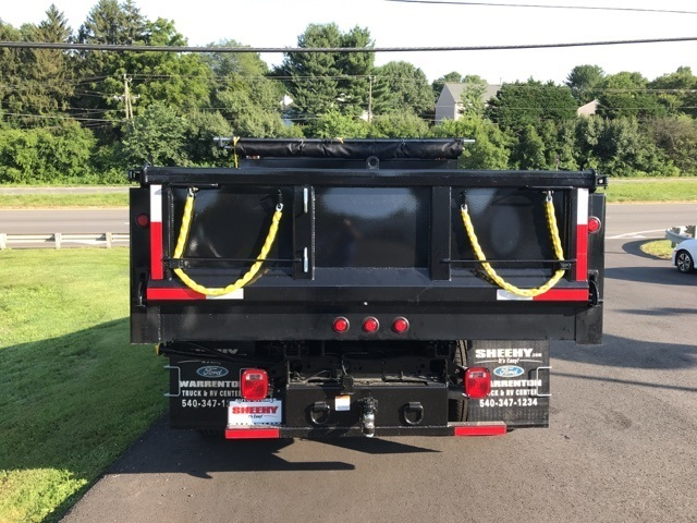 2019 F-350 Regular Cab DRW 4x4,  Godwin 184U Dump Body #YE60606 - photo 2