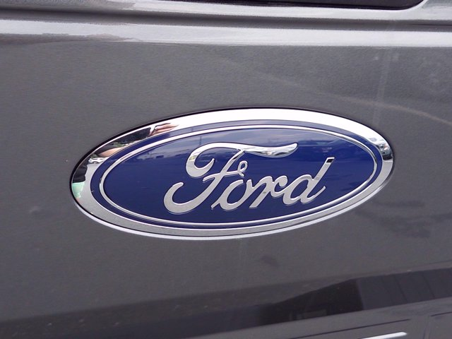 2020 Ford F-150 SuperCrew Cab 4x4, Pickup #MF0613 - photo 19