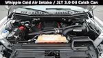 2019 Ford F-150 SuperCrew Cab 4x4, Pickup #FL010231 - photo 32