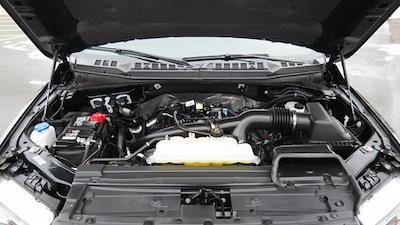 2019 Ford F-150 SuperCrew Cab 4x4, Pickup #FL1014D - photo 14