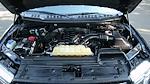 2019 F-150 SuperCrew Cab 4x4,  Pickup #FL105161 - photo 25