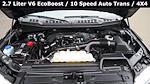 2019 F-150 SuperCrew Cab 4x4,  Pickup #FL1222D - photo 34