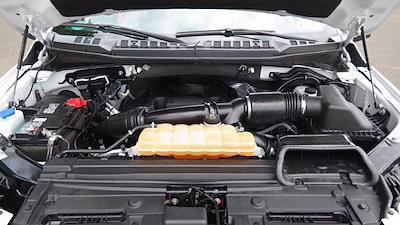 2017 Ford F-150 SuperCrew Cab 4x4, Pickup #FL1233C - photo 10