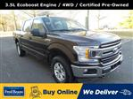 2019 F-150 SuperCrew Cab 4x4, Pickup #FL9587P - photo 1