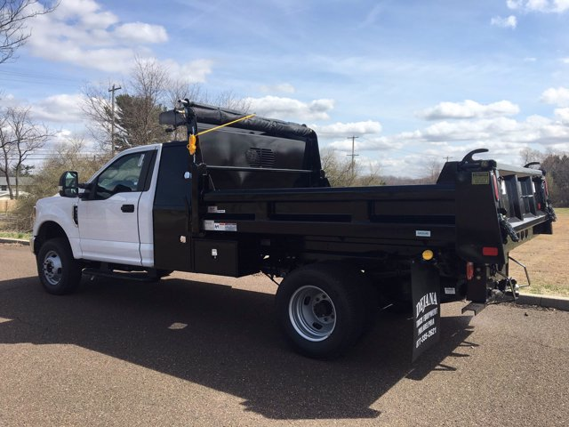 2020 Ford F-350 Regular Cab DRW 4x4, Dejana Dump Body #FLU00511 - photo 2