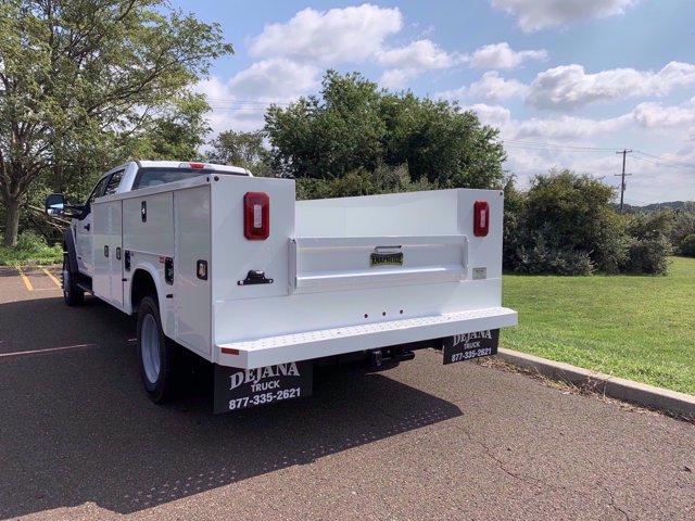 2020 Ford F-450 Crew Cab DRW 4x4, Knapheide Steel Service Body #FLU00840 - photo 4