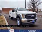 2019 F-550 Regular Cab DRW 4x4,  Cab Chassis #FLU34691 - photo 1