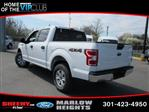 2019 F-150 SuperCrew Cab 4x4,  Pickup #BB59525 - photo 8