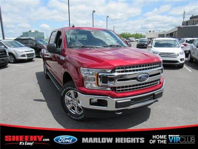 2019 F-150 SuperCrew Cab 4x4,  Pickup #BB94681 - photo 3