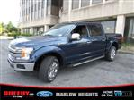 2019 F-150 SuperCrew Cab 4x4,  Pickup #BD10443 - photo 6