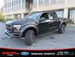 2019 F-150 SuperCrew Cab 4x4,  Pickup #BD28442 - photo 6