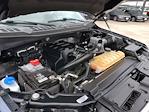 2016 Ford F-150 SuperCrew Cab 4x4, Pickup #GKE63239 - photo 21