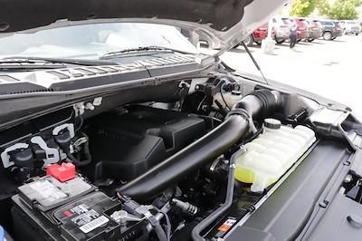2020 Ford F-150 SuperCrew Cab 4x4, Pickup #621517A - photo 11