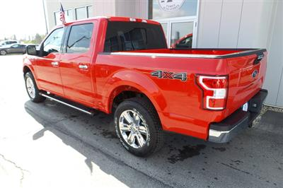 2020 F-150 SuperCrew Cab 4x4, Pickup #T2816 - photo 7