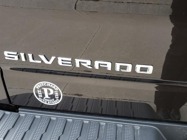 2020 Chevrolet Silverado 1500 Crew Cab 4x4, Pickup #LN1318 - photo 19