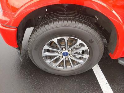 2019 Ford F-150 SuperCrew Cab 4x2, Pickup #H60816A - photo 14