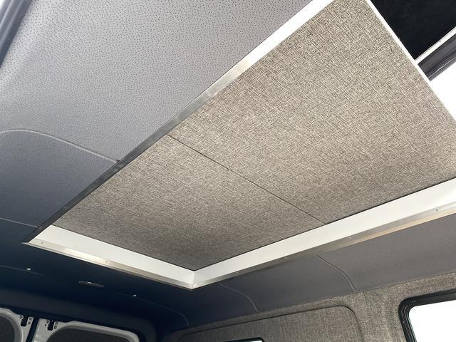 2019 Mercedes-Benz Sprinter 2500 Standard Roof 4x4, Travois Vans Other/Specialty #V19661 - photo 32