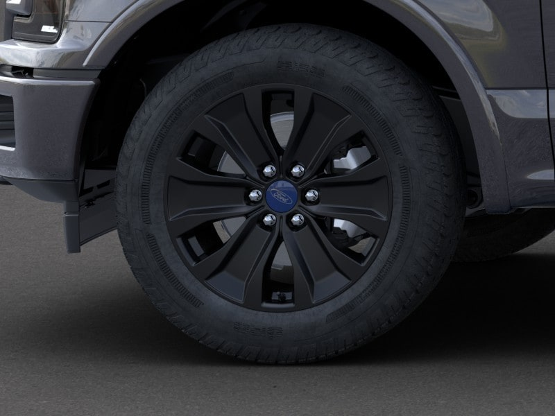 2020 Ford F-150 SuperCrew Cab 4x4, Pickup #LFC58350 - photo 19