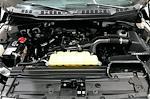 2020 F-150 SuperCrew Cab 4x4,  Pickup #TLKD73310 - photo 36