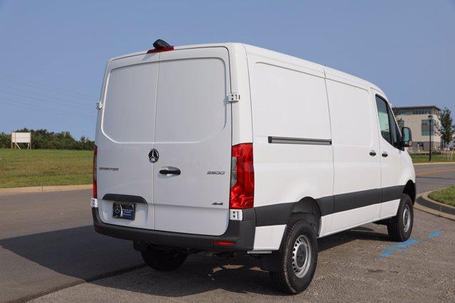 2019 Mercedes-Benz Sprinter 4x4, Empty Cargo Van #CVX00924 - photo 7