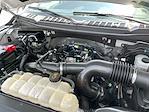 2019 Ford F-150 SuperCrew Cab 4x4, Pickup #P2793 - photo 18
