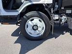 2020 LCF 5500XD Regular Cab DRW 4x2,  PMI Truck Bodies Landscape Dump #V10506 - photo 21